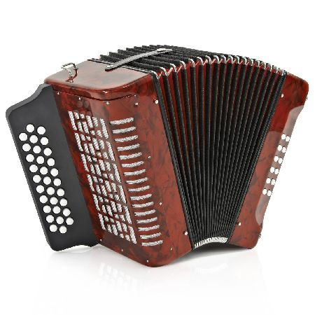 Gear4Music Diatonic Button Accordion by Gear4music 12 Bass The Diatonic Button Accordion by Gear4music is an excellent instrument ideal for any beginner or intermediate player. The quality of the Diatonic Button Accordion by Gear4music shines through with a f http://www.MightGet.com/january-2017-11/gear4music-diatonic-button-accordion-by-gear4music-12-bass.asp