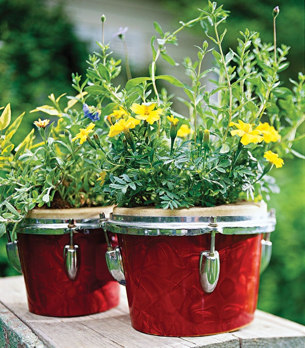 Bedtime for Bongo. Sound the right musical note by turning some old bongos into a miniature garden bed. Simply cut off the skins and insert containers of your choice. The bongos will hide the containers, so you can even use disposable plastic pots.