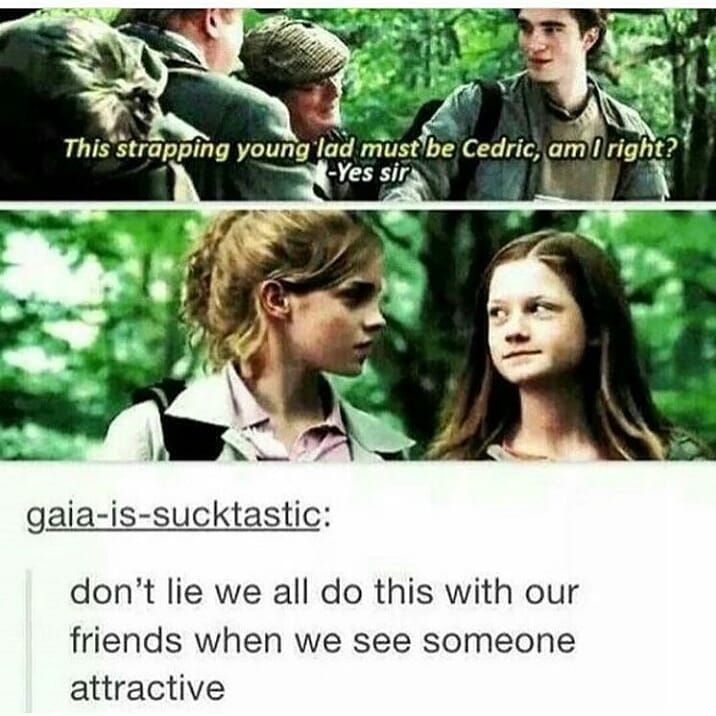 Harry Potter On Instagram Yes We Do Thehogsmeade Harrypotter Harry Potter Jokes Harry Potter Cosplay Harry Potter Fanfiction