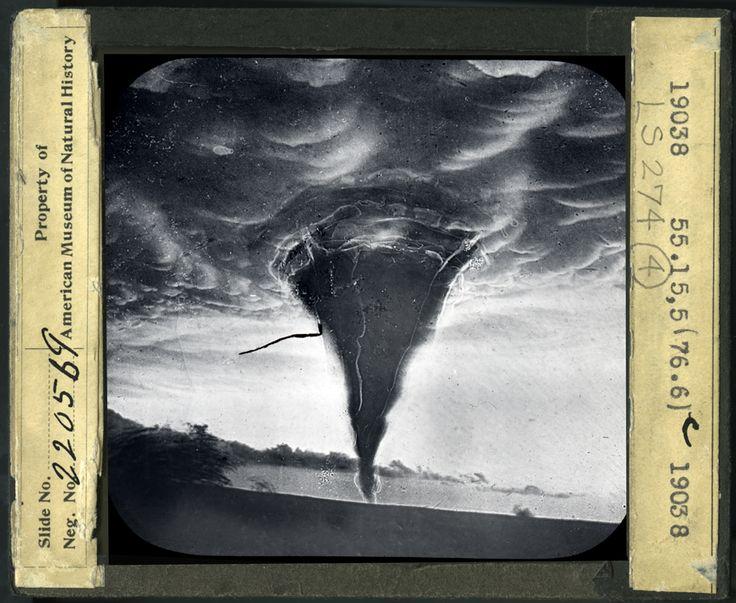 American Museum of Natural History ID: LS274-04Tornado, Waynoka, Oklahoma, May 17, 1898