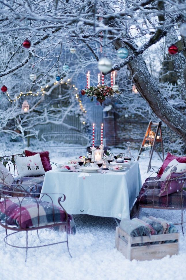 Christmas lunch in the garden!