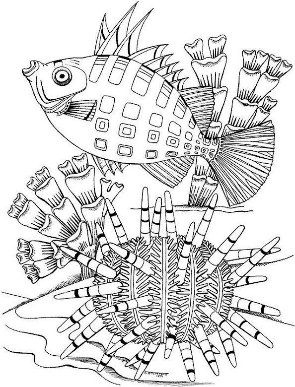 256 best kids coloring pages images on Pinterest Kids coloring