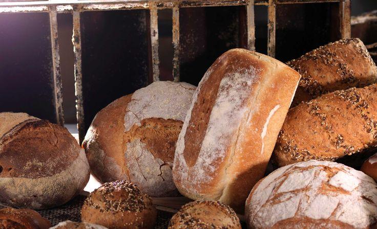 Bakeriet i Lom står bak denne oppskriften som viser deg trinn for trinn hvordan du lager gode grovbrød. Hvert år selges tusenvis av brød over disk...