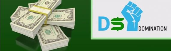 How to Earn Money Online with the DS Domination eBay Business [VIDEO]