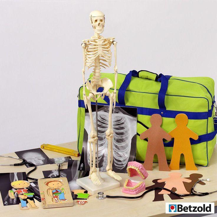 Der Aufbau des eigenen Körpers ist faszinierend für Kinder. Das Körper-Set bietet viele Möglichkeiten, Körperbewusstsein zu entwickeln. Wie heißen die Körperteile, wo sitzen die wichtigsten Knochen, wie viele Zähne haben wir, wie klingt mein Herzschlag? Umfangreiches Set mit praktischer Aufbewahrungstasche.⠀