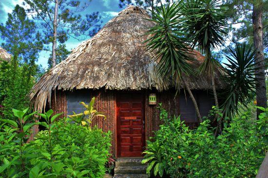 Gaia Riverlodge; Mountain Pine Ridge Forest Reserve: Our hut!