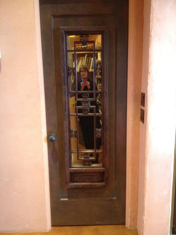 Mirrored Interior Door. Interior DoorsSeattleSeattle ...