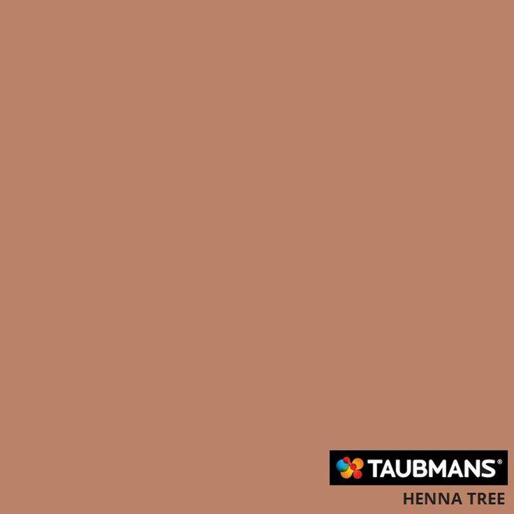 #Taubmanscolour #hennatree