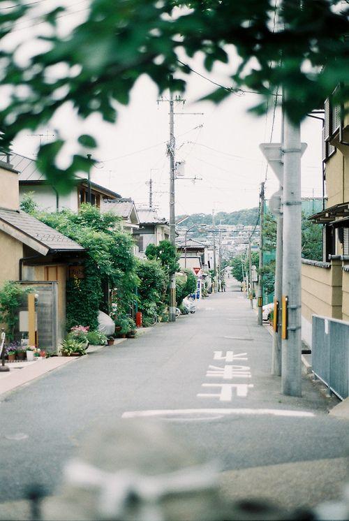 noshitsuji:
