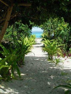 Mystery Island, Vanuatu 2015