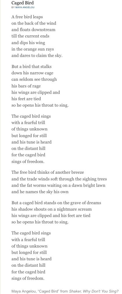 still i rise and caged bird by maya angelou essay Free essay: still i rise maya angelou the poem 'still i rise' written by american author maya angelou is written from the perspective of maya herself she is.