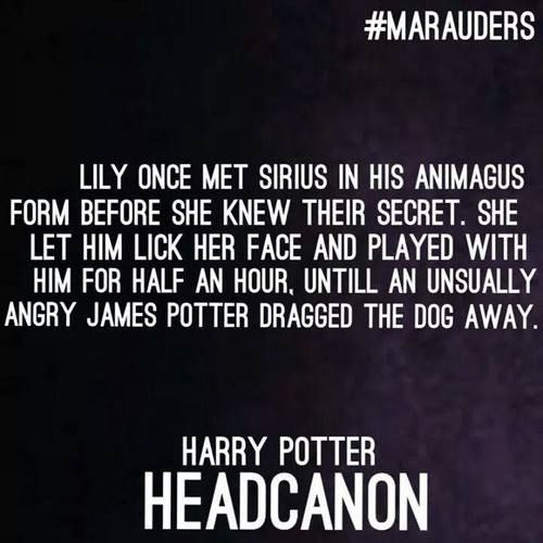 the marauders and lily. Hp canon accepted