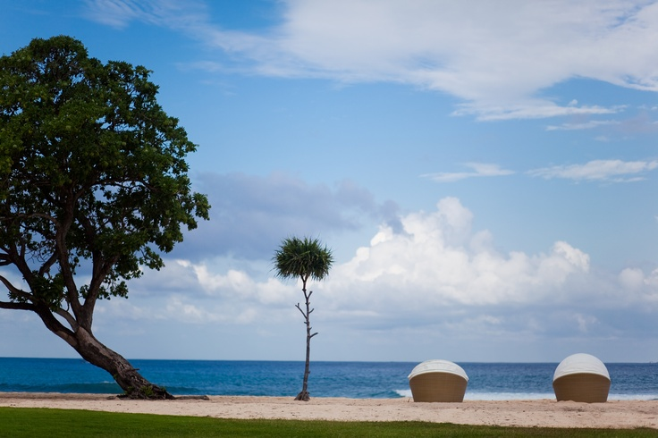 Imagine yourself lounging on a secluded pristine beach with a good book