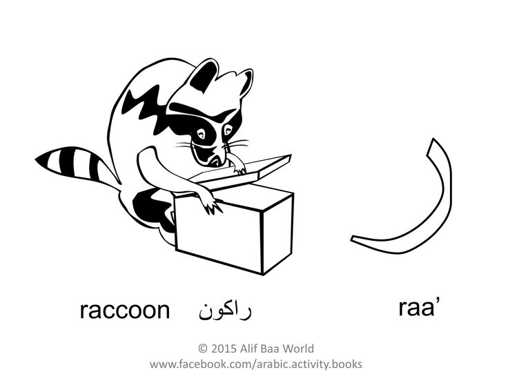 The 10th letter of the Arabic alphabet is: ر (Name: raa') (Sound: r)  for راكون (Pronounced: raccoon) (English: Raccoon).  Print and color the letter, the animal, and draw its environment in the background. After you are done, share your finished work with your name and age in the comments below. Have fun !!!  P.S. For more fun activities, check out the Arabic Alphabet Activity Book (http://www.amazon.com/author/aliakhaled).