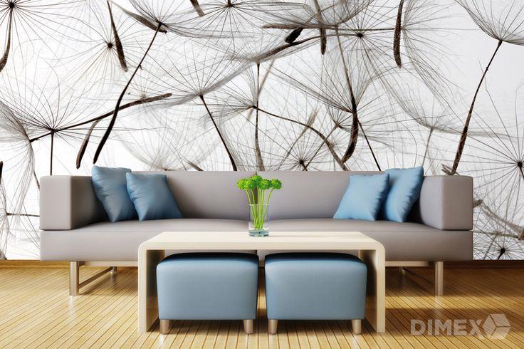 Fototapeta v obývačke s motívom semienok z púpavy   DIMEX