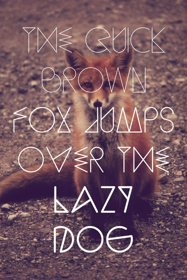 59bab2138c728b5b6c477e85fe5ff0a4 A new incredible FREE font gallery                                                                                                                                                                                 More