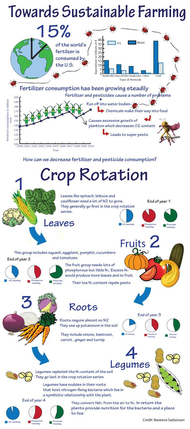 decrease fertilizer and pesticide use with crop rotation methods