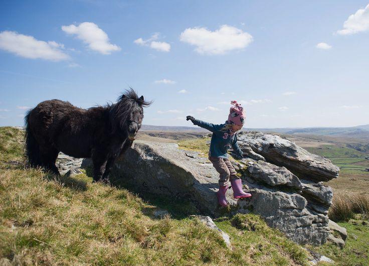 IlPost - Una bambina, figlia di un allevatore dello Yorkshire, gioca con un cavallo nel suo allevamento in Inghilterra (Ian Forsyth/Getty Images) - Una+bambina,+figlia+di+un+allevatore+dello+Yorkshire,+gioca+con+un+cavallo+nel+suo+allevamento+in+Inghilterra (Ian+Forsyth/Getty+Images)