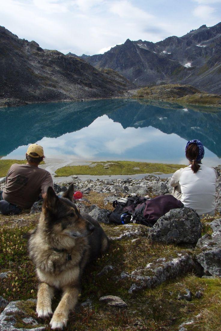 Hatcher Pass Willow Alaska By Andrea Alaska