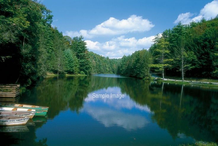 64 best images about west virginia seneca rocks on for Seneca lake ny cabins
