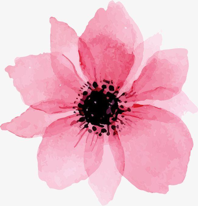 Schöne Blumen In Rosa , Rosa, Aquarell, Blumen PNG und Vektor zum kostenlosen Download