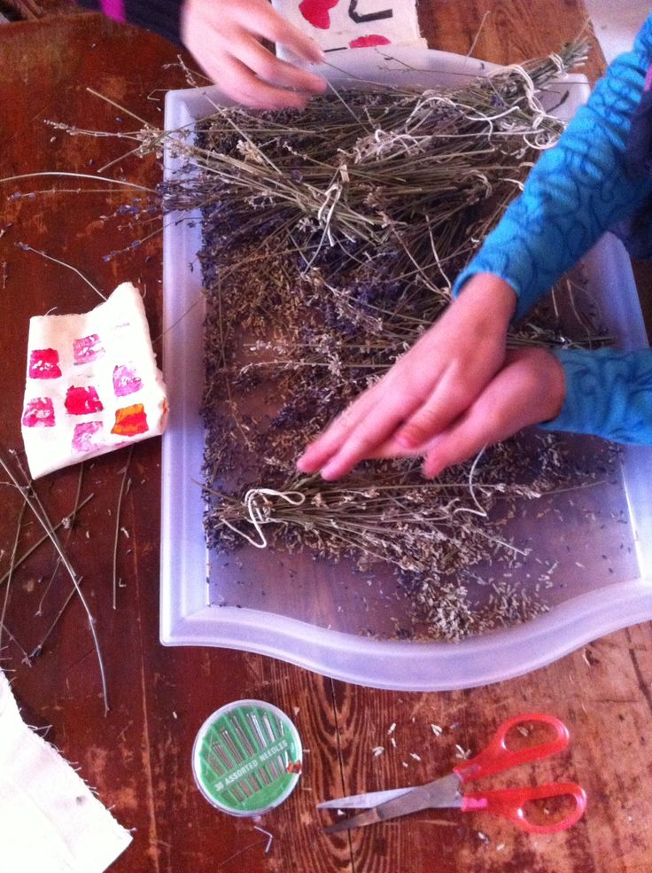 Making lavender bags out of the lavender they dried earlier this fall.