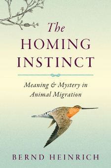 Loving this latest book by biologist Bernd Heinrich on an instinct that all the garden's creatures (and us!) share in some way, THE HOMING INSTINCT.