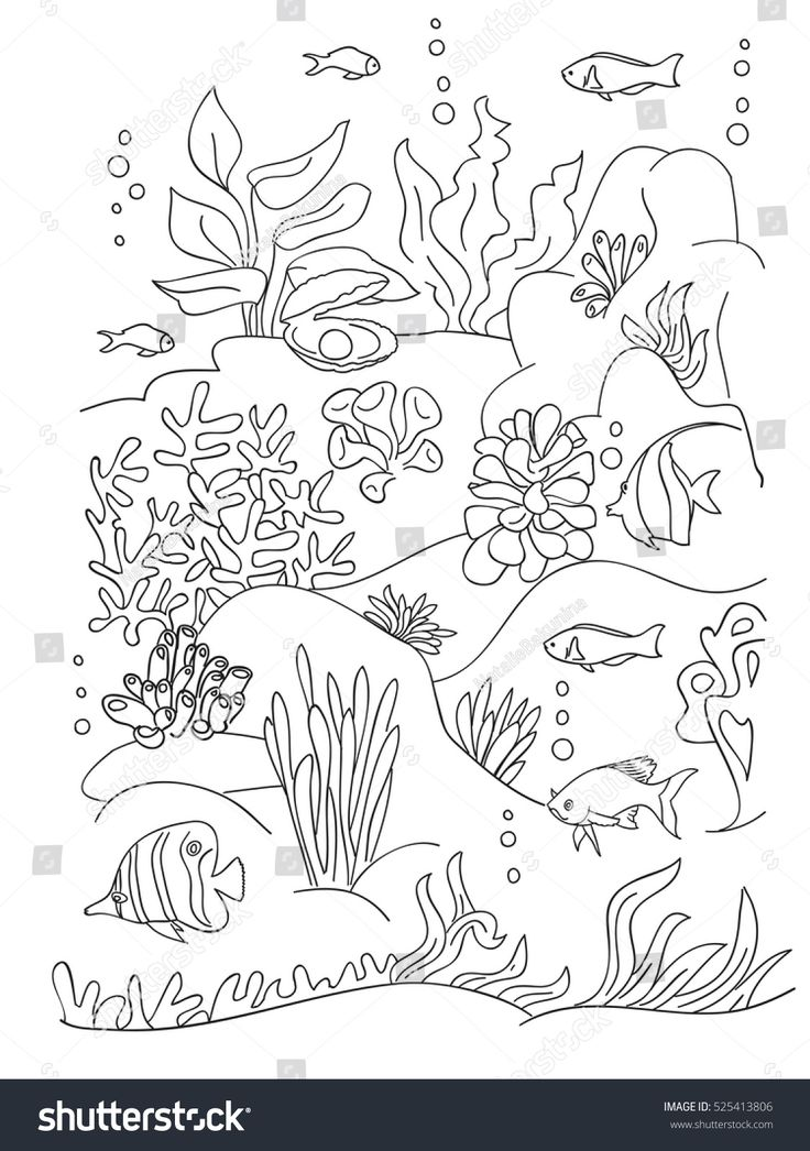 34+ Coral reef plants coloring pages info