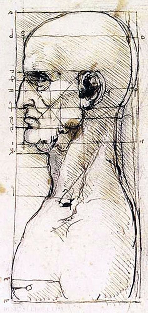 -Leonardo da Vinci Study of Proportion of a man's profile