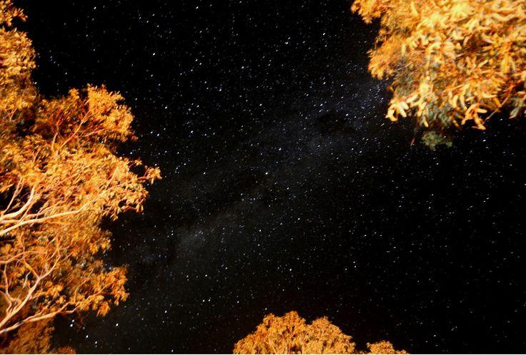 Night Sky Milparinka