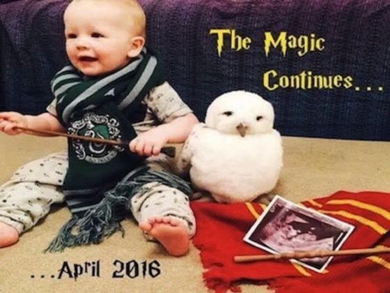 """Rank These """"Harry Potter"""" Pregnancy Announcements"""