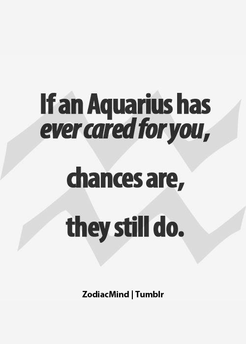 si a un acuario alguna vez le has importado, lo más probable es que todavía lo hace...