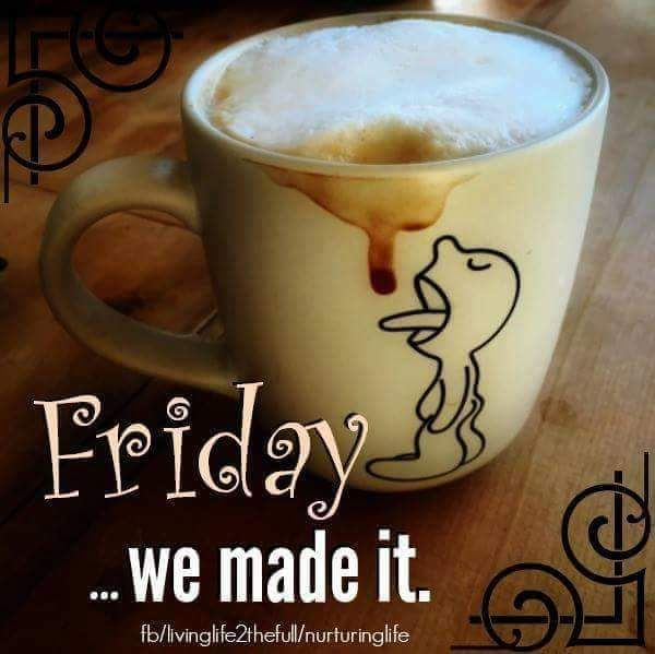 Good Morning Friday ...we made it.!!