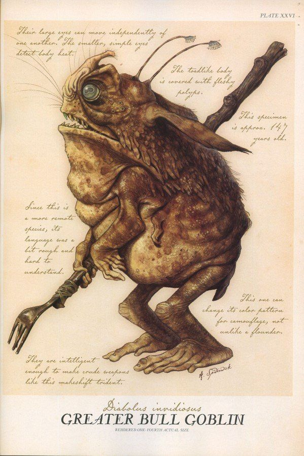 "This is a Greater Bull Goblin | Goblins (Family: Adentidae) | Sometimes Sprites are called Faeries, even though we all know the term ""Faerie"" can be used to designate creatures like Trolls, Giants and Kelpies as well."