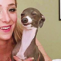 16 Best Kermit And Mrs Marbles Images On Pinterest