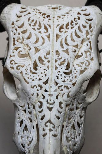 Best carved animal skulls images on pinterest