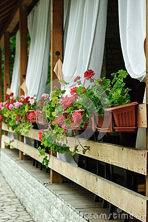 Empty terrace with white shades and red Geranium flowers in planters hanging from the side of the balcony.