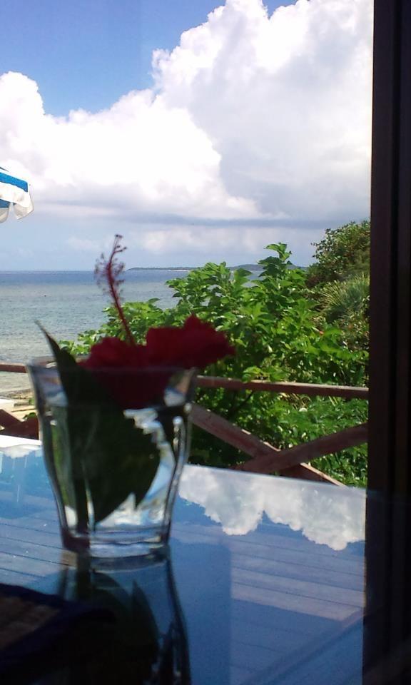 〈沖縄ハイビー〉  沖縄の海で撮った一枚。机に空と海が映り込んでます。夏だね。
