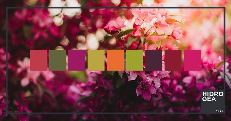 Tra i colori Pantone del 2017 abbiamo il Floralabundant. La palette più vivace che si ispira alla natura e ai fiori! Rosa dell'Achillea millefoglie o Rosso Dalia da abbinare alle sfumature di verde intenso.