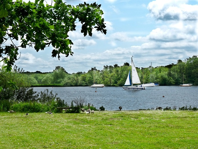 Wroxham broads in Norfolk picture