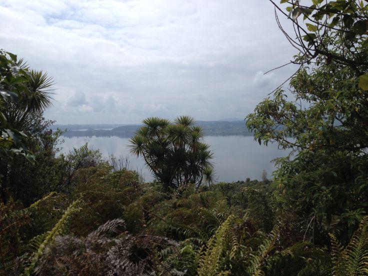 Lake Rotorua, background Lake Rotoiti