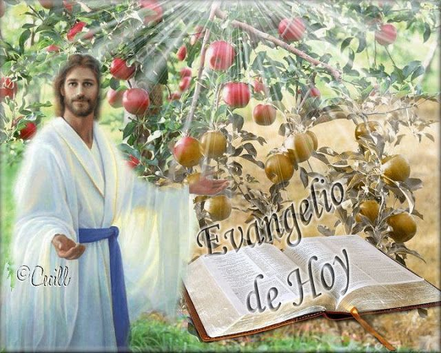 """Lectio divina: Lectio divina del 13 de Septiembre de 2014  El evangelio de hoy nos presenta la parte final del Sermón de la Planicie que es la versión que Lucas da del Sermón de la Montaña del Evangelio de Mateo.    • Lucas 6,43-45: La parábola del árbol que da buenos frutos. """"Porque no hay árbol bueno que dé fruto malo y, a la inversa, no hay árbol malo que dé fruto bueno. Cada árbol se conoce por su fruto. No se recogen higos de los espinos, ni de la zarza se vendimian uvas""""."""