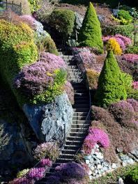 Zahrada • ve svahu