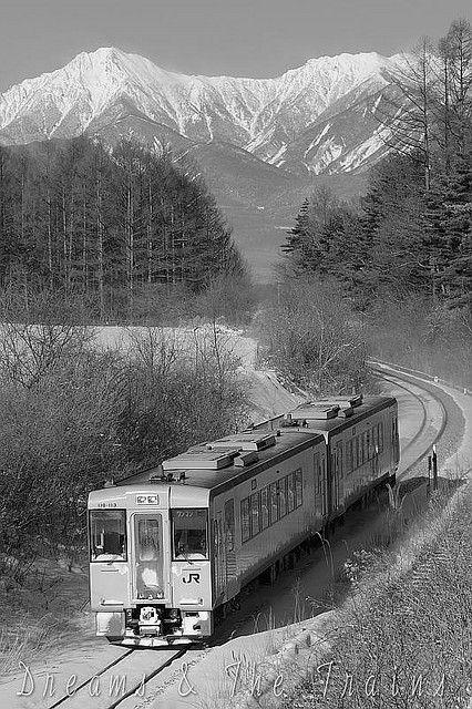 Japanese Railway <110 series diesel car / Koumi Line>