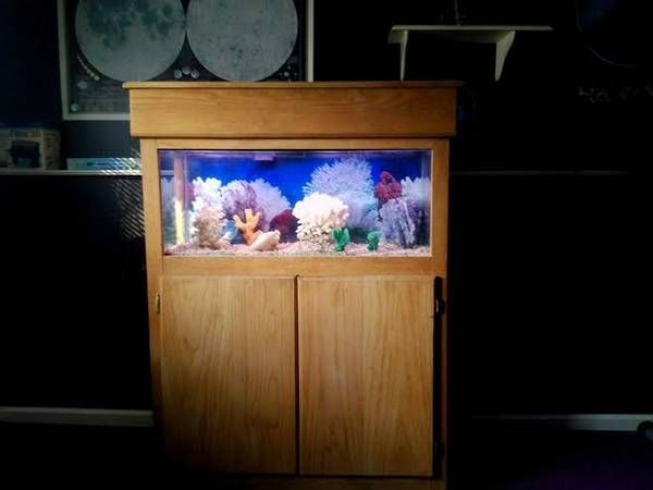 Aquarium stands for sale woodworking projects plans for 30 gallon fish tank heater