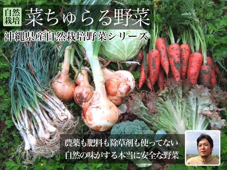 おいしくて安全な沖縄食材通販のオキモール  完熟マンゴー、自然栽培野菜、海ぶどう、シークワーサーなどの安全でおいしい沖縄食材をお届けします