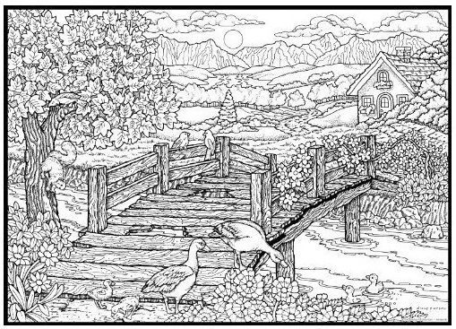 146 best Coloring Pages images on Pinterest Coloring books
