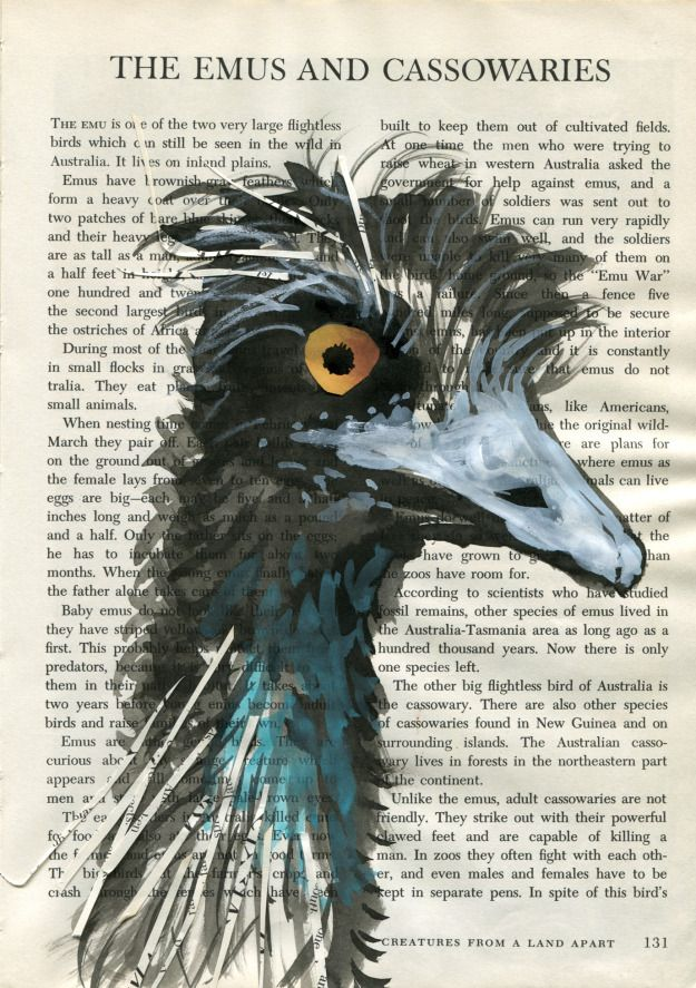 emu - indian ink, watercolour, white gouache and collage on book page