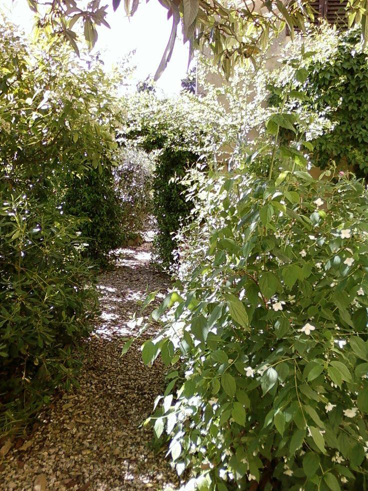 Giardino antico - Toscana