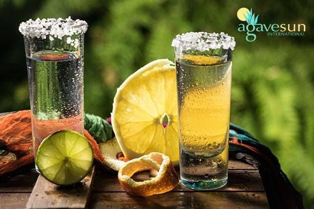 Huizache Tequila & Agave Sun International Imports | Indiegogo